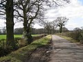 Lane to Wroxall from Haseley Knob - geograph.org.uk - 1775384.jpg
