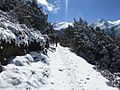 Langtang national Park Trek.jpg