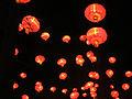 Lanternes Chinoises - Parc Tête d'Or 01.JPG