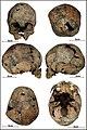 Lapa do Santo - Sepultamento 06 - Cranio.jpg