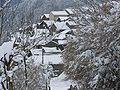 Lapege sous la neige.JPG