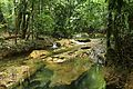 Las preciosas cascadas de Agua Azul, Chiapas. 21.JPG