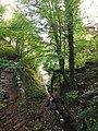 Laufbachwasserfälle Loffenau 03.jpg