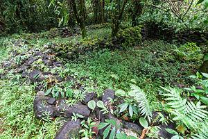 Kosrae - Menka ruins
