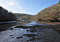 Lerryn Estuary 4.jpg