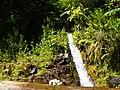 Levada 25 Fontes, Madeira, Portugal, June-July 2011 - panoramio (15).jpg