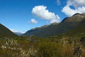 English: Lewis Pass: A mountain pass on the so...