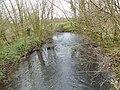 Licques la Hem (rivière) (1).JPG