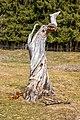 Liebenfels Gößeberg Gummiwiese abgestorbener Baum Totholz 15032019 6133.jpg