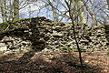 Lindlar - Neuenberg - Burg 28 ies.jpg