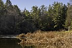 Little Beaver State Park WV 1 LR.jpg