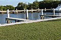 Local birds on the docks of Elliot Key Campground - panoramio.jpg