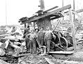 Logging crew and donkey engine, Hamilton Logging Company, ca 1912 (KINSEY 248).jpeg