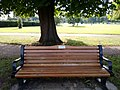 Long shot of the bench (OpenBenches 1761-1).jpg