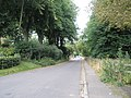 Looking back down Winchester Road to Chawton - geograph.org.uk - 937999.jpg