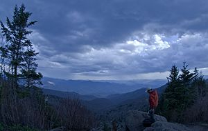 Waterrock Knob - Image: Looking south from the summit of Waterrock Knob