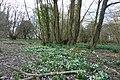 Lorenden Park, Painters Forstal - geograph.org.uk - 1757150.jpg