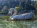 Los Aposentos, Guatemala - Cisne (HDR).jpg