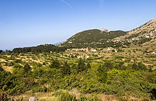 Lovćen National Park - panoramio.jpg
