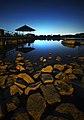 Lower Peirce Reservoir, Singapore - 20090905-02.jpg