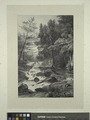Lower falls near the residence of Mr. Montgomery (NYPL Hades-1826155-1662513).tiff
