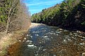 Loyalsock Creek (8671041240).jpg