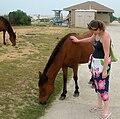 Lyndi&pony.jpg