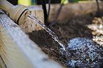 MCAS Yuma Earth Day Seed Planting 150422-M-SJ585-509.jpg