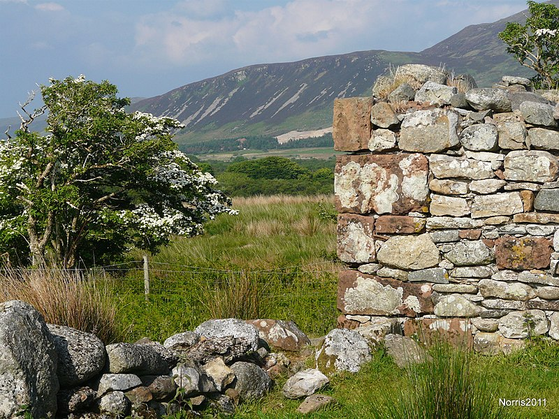File:Machrie Moor in the late spring of 2008. - panoramio.jpg