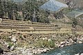 Machu Picchu, Peru - Laslovarga (17).jpg