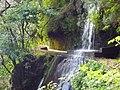 Madeira3 005.jpg