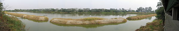 Mai Po Marshes serves as a stop for migrating birds.