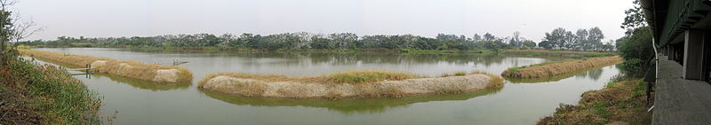 Panorama of the Mai Po reserve