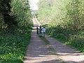 Main track in Callan's Lane Wood - geograph.org.uk - 412355.jpg