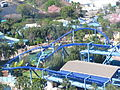 Manta at SeaWorld Orlando 57.jpg