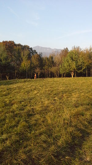 Parco dei Colli di Bergamo - A view of  Maresana in the territory of Parco dei Colli