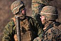 Marines Prepare for Platinum Lion through Live Fire Exercise 150106-M-KK554-681.jpg