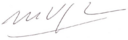 Mario vargas llosa signature transparent.png