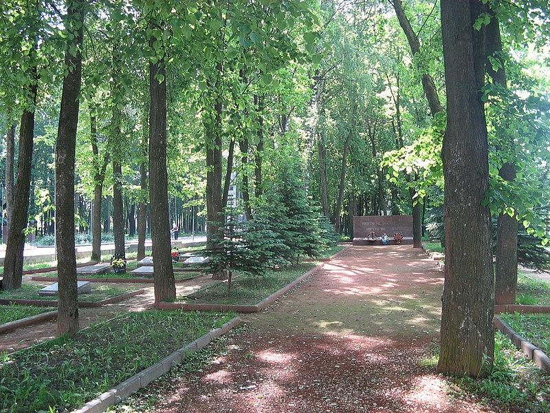 File:Mass grave in Yelnya.jpg