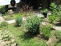 Medieval garden (Perugia) 20.jpg