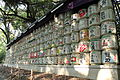 Meiji Shrine - August 2013 - Sarah Stierch 05.JPG