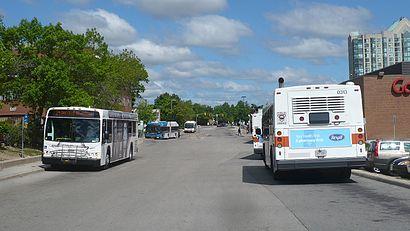 Comment aller à South Common Centre Bus Terminal en transport en commun - A propos de cet endroit