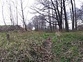 Mikolow, Poland - panoramio (110).jpg
