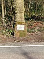 Milestone on B4194 to Bewdley - geograph.org.uk - 775749.jpg