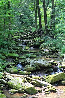 Mill Creek (Whitelock Creek) small creek in Wyoming County in the State of Pennsylvania