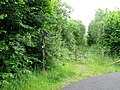 Millennium Milepost on route 47 - geograph.org.uk - 853913.jpg