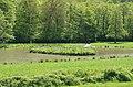 Monceau-sur-Sambre - parc - 2019-05-12 - 12.jpg