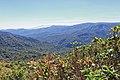 Monteverde Reserve Costa Rica 05.jpg