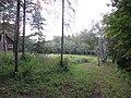 Morgan Arboretum 10.jpg