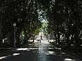 Morning in the Hyde Park, Sydney 02.jpg
